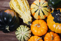 Assorted pumpkins and squashes on rustic wooden boards Royalty Free Stock Photography