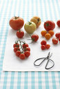 Assorted tomatoes on table Stock Photo