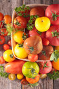 Assorted variety of tomato Royalty Free Stock Photo