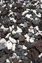 Assorted volcanic rocks Royalty Free Stock Photo