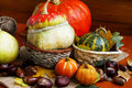 Assortment of autumn pumpkins Royalty Free Stock Photography