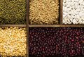 Assortment of beans red lentil, green lentil, chickpea, peas, r Royalty Free Stock Photo