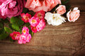 Assortment of beautiful roses on rustic wooden table Royalty Free Stock Photography