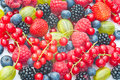Assortment of berries including strawberries blackberries redcurrant blueberries and gooseberries Stock Photography