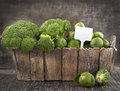 Assortment cabbages on wooden background fresh Royalty Free Stock Photos