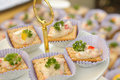 Assortment of canapes closeup isolate Royalty Free Stock Image