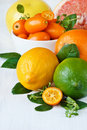 Assortment citrus fruit.. Stock Photos