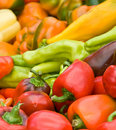 Assortment of colorful peppers Royalty Free Stock Photo