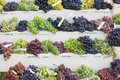 Assortment of different grapes on stand Stock Photography