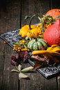 Assortment of different pumpkins and berries Royalty Free Stock Photo