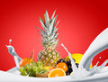Assortment of exotic fruits sweet isolated on white background Royalty Free Stock Photography