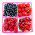 Assortment fresh fruit Royalty Free Stock Photography