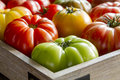 Assortment of fresh heirloom tomatoes wooden box filled with vine ripened from farmers market Stock Images