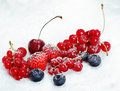 Assortment of luscious ripe berries Royalty Free Stock Images