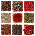 Assortment of peppercorns and chili Stock Images