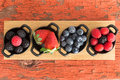 Assortment of ripe fresh autumn berries displayed on a wooden board in individual dishes with raspberries blackberries blueberries Royalty Free Stock Photography