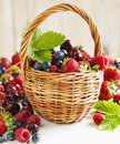 Assortment of summer berries in the basket. Royalty Free Stock Photo