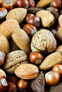 Assortment of Whole Mixed Nuts Royalty Free Stock Images