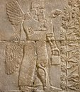Assyrian wall relief of a winged genius with cuneiform