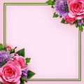 Aster and rose flowers arrangement and a frame Royalty Free Stock Photo