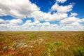 Astrakhan steppe under beautiful sky. Panorama of nature near salt lake Baskunchak