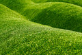 Astro-turf Royalty Free Stock Photo