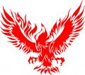 Águila en llama 3