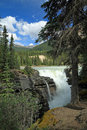Athabasca Falls - Jasper National Park Royalty Free Stock Photography