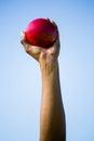 Athletes hand holding shot put ball Royalty Free Stock Photo