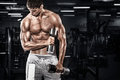 Athletic shirtless young sports man - fitness model holds the dumbbell in gym. Copy space fore your text. Royalty Free Stock Photo
