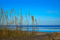 Atlantic Beach in Jacksonville of florida USA Royalty Free Stock Photo