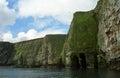Atlantic birdlife shetland in islands Stock Image