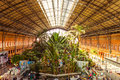 Atocha madrid spain march tropical green house location in th century railway station in march in madrid spain Stock Photo