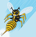 Attacking wasp illustration of an angry Stock Image