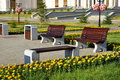 Attractive benches in the street with yellow flowers evening light Stock Photo