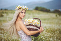 Attractive blonde in chamomile field young woman in wreath surrounded by chamomiles Stock Images