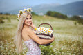 Attractive blonde in chamomile field young woman in wreath surrounded by chamomiles Royalty Free Stock Image