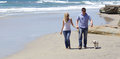 Attractive Couple Walking at the Beach With Their Puppy Royalty Free Stock Photo