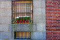 Attractive outdoor window dressing Royalty Free Stock Photo