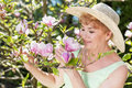Attractive senior woman admiring magnolia flowers in a summer garden Royalty Free Stock Photo