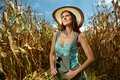 Attractive woman farmer in the cornfield sexy standing at harvest Royalty Free Stock Images