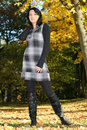 Attractive woman posing in the autumn park Stock Images