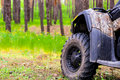 ATV Quadbike in a pine forest. Summer time. Royalty Free Stock Photo
