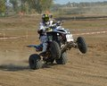 The ATV is raised to buck Royalty Free Stock Photo