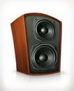 Audio speaker in plane wooden body Royalty Free Stock Photo