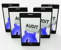Audit piggy bank shows inspect analyze and verify showing Royalty Free Stock Photo
