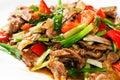 Aufruhr fischrogen duck meat with vegetables Stockbild