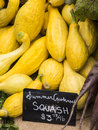 Aummer crookneck squash summer yellow for sale at local farm market Stock Images