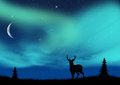 Aurora borealis deer silhouette in the Royalty Free Stock Photos
