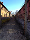 Auschwitz concentration camp a horrifying piece of history that everyone needs to visit and never forget Royalty Free Stock Image